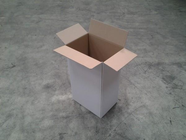 Faltkarton 350 x 244 x 625 mm W1