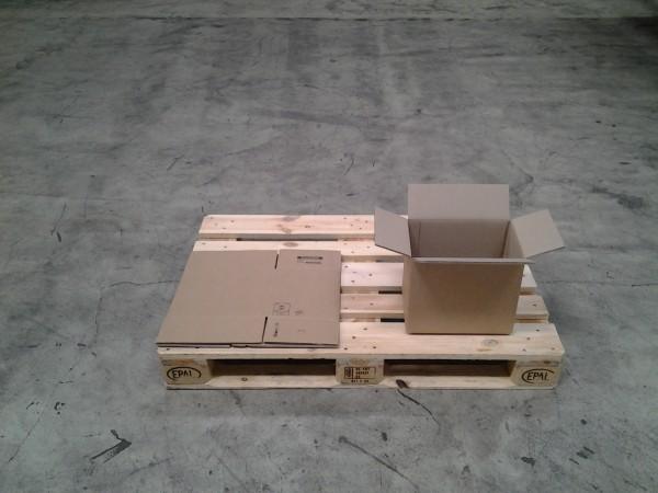 Faltkarton 310 x 220 x 250 mm W2
