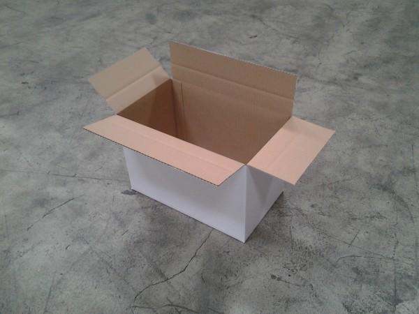 Faltkarton 390 x 231 x 262 mm W1
