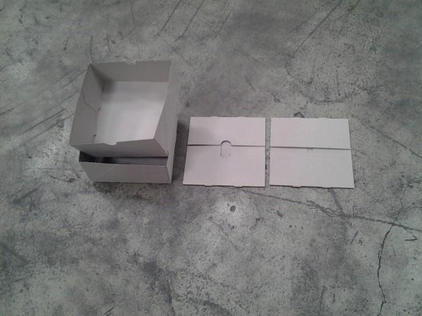 Faltkarton 320 x 220 x 80 mm P1