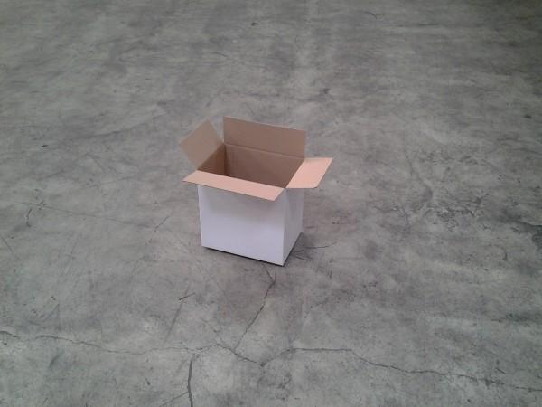 Faltkarton 300 x 205 x 300 mm W1