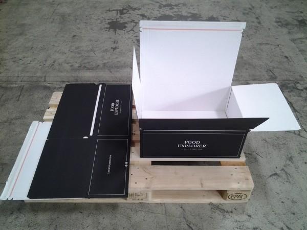 Faltkarton 550 x 400 x 200 mm W1