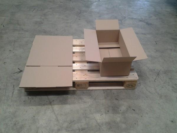 Faltkarton 650 x 300 x 180 mm W2